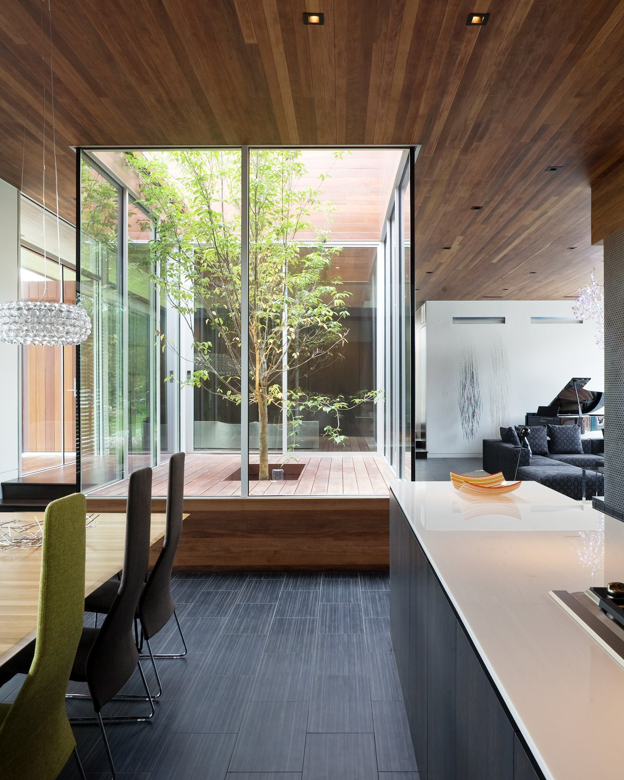 An interior glass courtyard anchors the central living areas—the dining room, foyer, living room, and kitchen all circulate a living tree. This was installed for natural light and to reinforce a connection between the indoors and outdoors. A Bold Home Creatively Combines Curves and Modern Lines - Photo 3 of 10