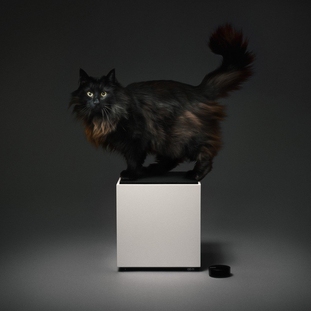 Here, Teenage Engineering's masterful take on the Carlsson Loudspeaker shows off its sleek white cabinet and black grille. The optional Ortho Remote is also shown. Unfortunately, the cat is not included.  Sound Style by Stephen Blake from A Classic 1970s Speaker Gets New Life for a Modern Audience