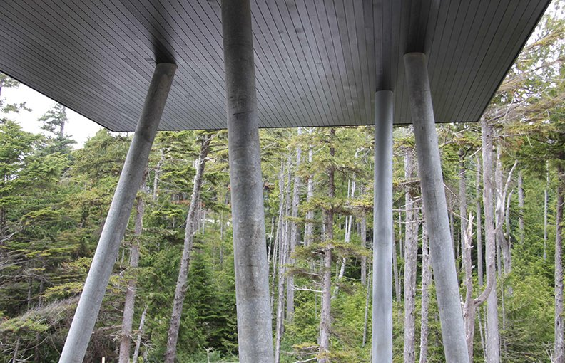 Where the floating outbuilding meets a grove of silver cedar, galvanized steel columns match the trunks.  Prefab by Low Junjie from A Giant, 20-Module Prefab Perched Across a Coastal Site in British Columbia