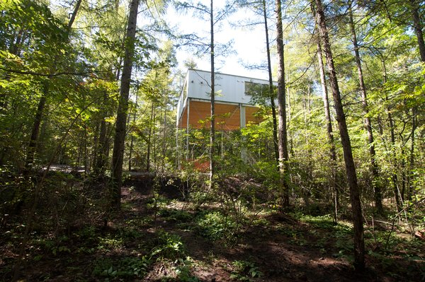 Go Hasegawa's minimal intervention gently communicates with the surrounding dense forest.