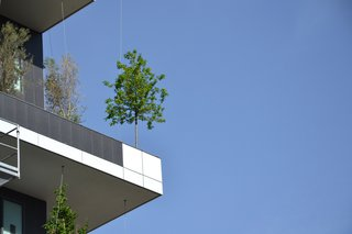 Pair of Skyscrapers Sneak a 2,800-Plant Park into Milan - Photo 4 of 5 -