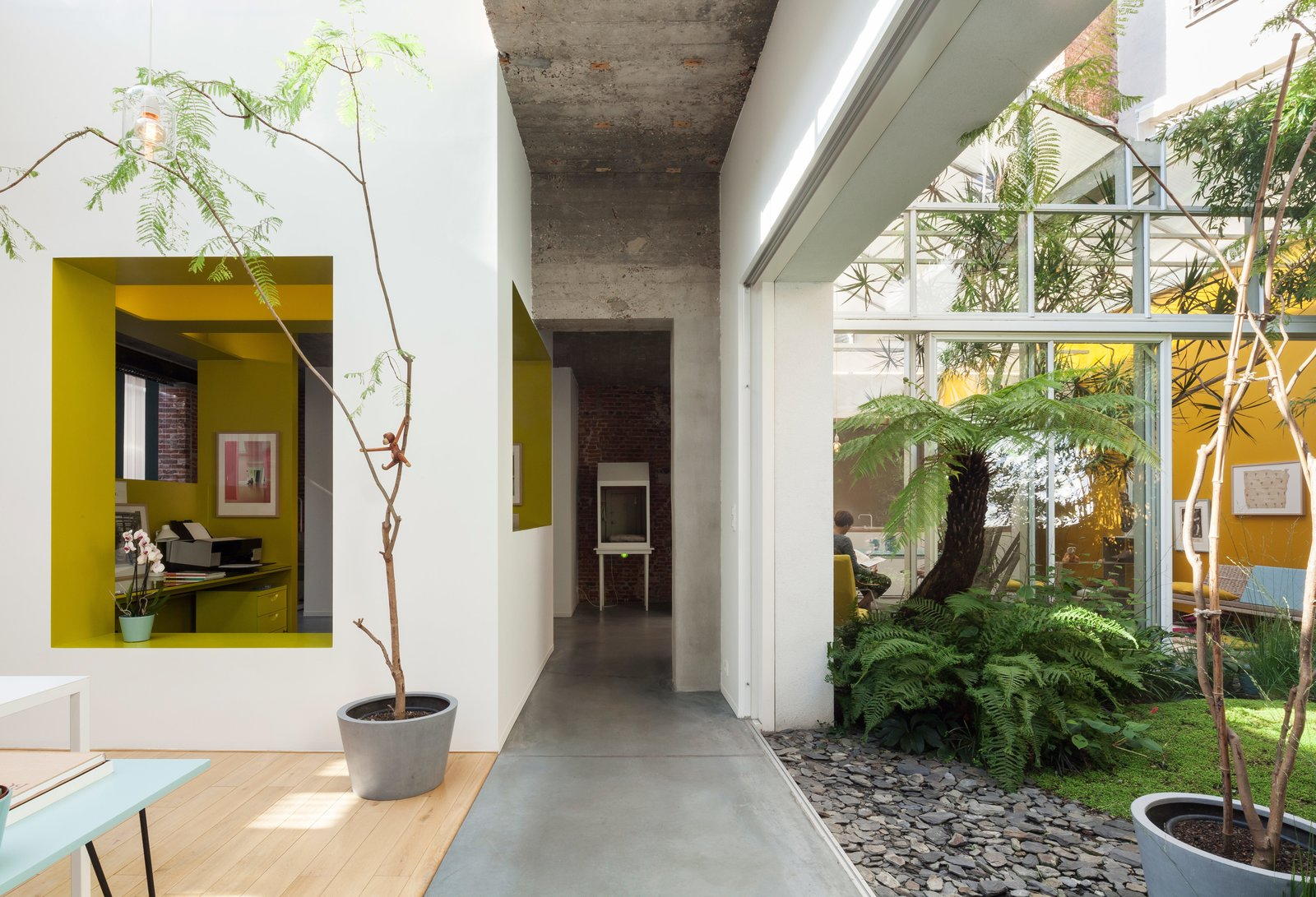 A combination of sliding doors, strategically placed voids, and large indoor plantings create fluid boundaries between indoors and out. The interior courtyard garden—landscaped with tropical plants and volcanic sand—is visually accessible from nearly every room, including the dining and kitchenarea. Tagged: Hallway and Concrete Floor.  Modern Homes With Lush, Indoor Plants by Aileen Kwun from A Creative Dreamworld Complete With Neon Rooms and a Tropical Garden