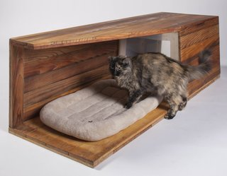 Douglas Teiger, managing principal at Abramson Teiger Architects of Culver City, designed and built this cat house with his 11-year-old son, Jared, using leftover cedar siding and an old plastic box. The total cost: under $20.
