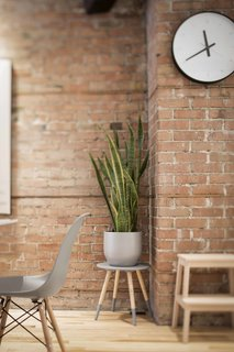 Blocked in on Two Sides, a Renovation Opens a Quebec Apartment to Tons of Natural Light - Photo 7 of 8 - A succulent sits atop a stool from Zone Maison, juxtaposed against a warm brick wall.