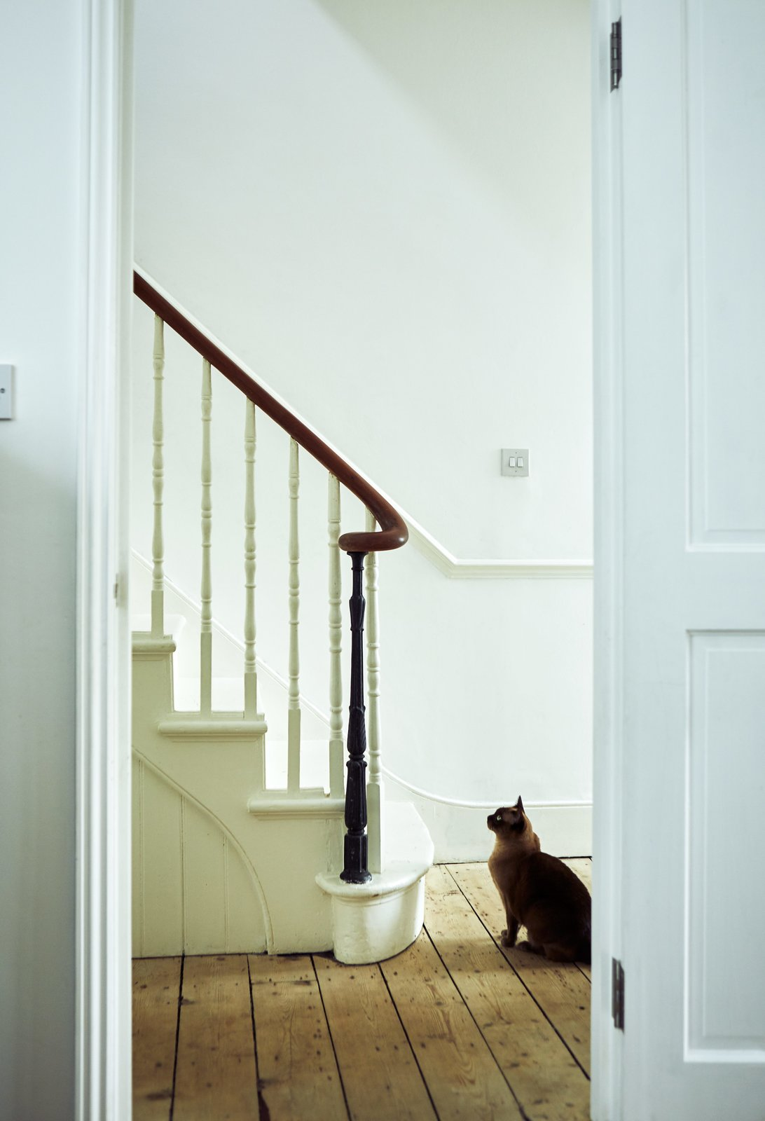 The hallway's matte-white paint is a crisp backdrop to refurbished details like the balustrade.  Photo 13 of 21 in 21 Cats Living in the Modern World from This Kitchen Is as Cozy as Your Favorite Coffee Shop and That's Exactly the Idea