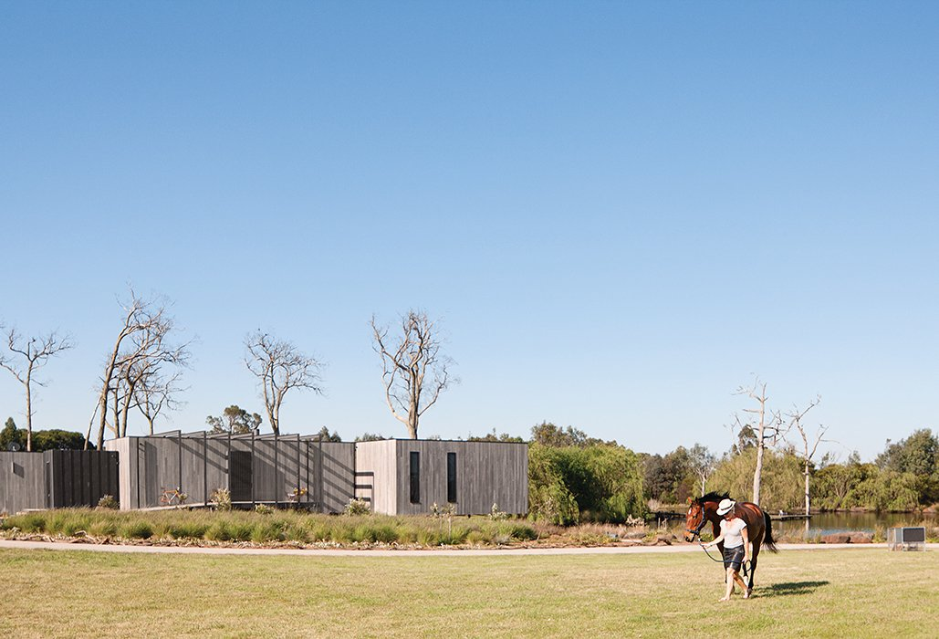 The 16-acre property includes room for the family's horses and a portable chicken coop.