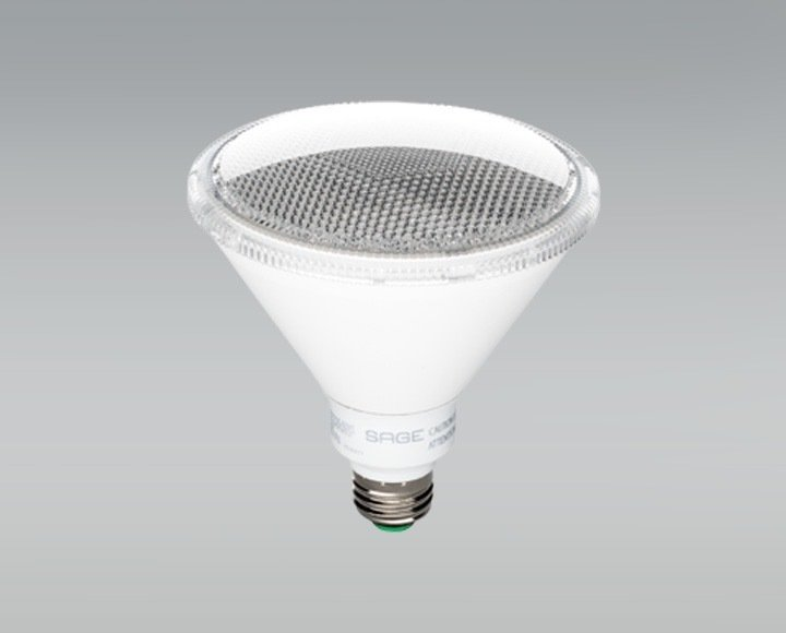 SAGE's LED Outdoor Floodlight is both long-lasting and energy-efficient. Using 80 percent less energy than standard bulbs, the Huffts can remotely dim or turn off the lights with the app.  Photo 12 of 13 in These Modern Parents Show How Invaluable Technology Can Be
