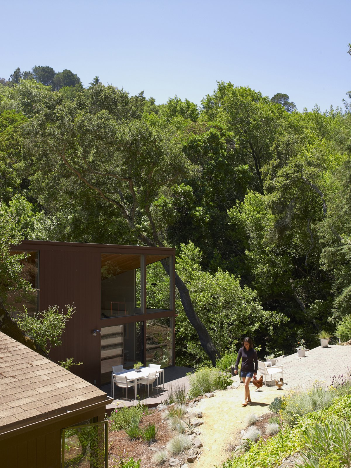There's little concern about privacy considering the canopy of trees that surrounds the house. Alexander, and the chickens, take advantage of their sunny Northern Californian clime. Tagged: Outdoor and Walkways.  Photo 20 of 20 in You Don't Have to Just Be at Your Desk When Working from Home