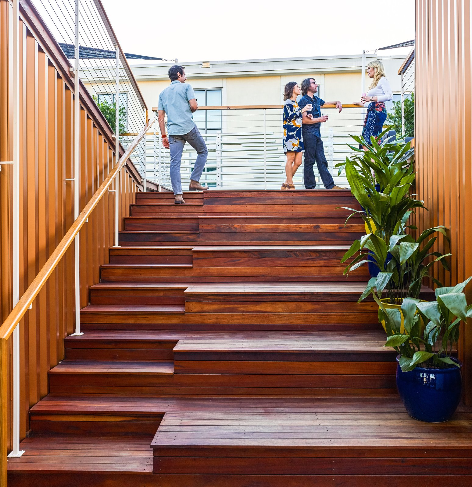 The staggered terrace, lined with cast iron plants (Aspidistra elatior), leads up from the living room. Tagged: Wood Railing, Wood Tread, and Staircase.  Photo 4 of 8 in High Above Traditional Charleston, a Modern Home Finds its Roost