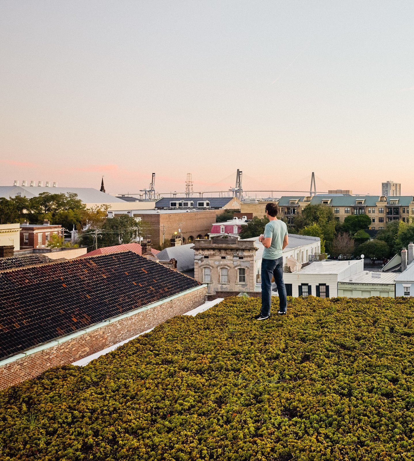 Twenty species of drought-resistant succulents, punctuated by solar panels, carpet the top of the home. Green Roof Outfitters installed the plants in modules. Tagged: Outdoor and Rooftop.  Photo 6 of 8 in High Above Traditional Charleston, a Modern Home Finds its Roost