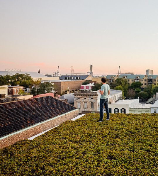 Twenty species of drought-resistant succulents, punctuated by solar panels, carpet the top of the home. Green Roof Outfitters installed the plants in modules.