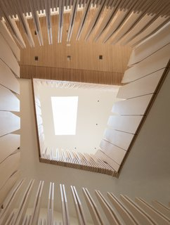 What's the Twist Behind This Home's Sinuous Staircase? Ordinary Plywood - Photo 2 of 14 - Here, the material palette continues: Plywood makes up the deep window frames, built-in shelving, and wall panels, which have been cut into gently jagged, unconventional forms.