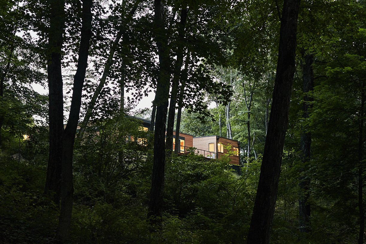 From the park's wooded paths, the butterfly roof of the home's airy central volume is visible behind a rectangular unit.
