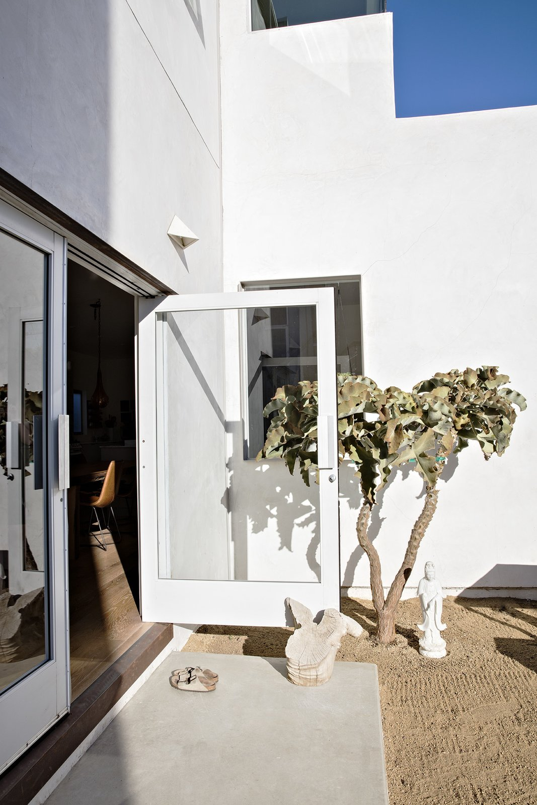 """Doors recycled from an East Los Angeles grocery store lead to the backyard, which is populated with """"stark and minimal"""" plantings, says Siegal, like the Velvet Elephant Ear. Tagged: Outdoor, Back Yard, Front Yard, Side Yard, Trees, and Gardens.  Photo 4 of 14 in Such Great Heights"""
