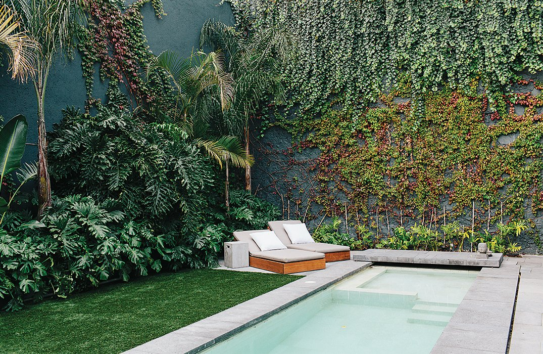 Tagged: Outdoor, Large Pools, Tubs, Shower, and Concrete Pools, Tubs, Shower.  Photo 1 of 15 in A Lush Retreat With a Sheltered Rooftop Pool in Mexico City