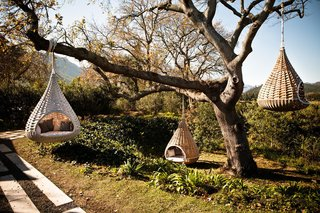 10 Surreal Tree Houses That Will Make Your Childhood Dreams Come True - Photo 2 of 10 - Dedon's Hanging Lounger, designed by Daniel Pouzet and Fred Frety can be an instant mini-tree house escape. All you need is the right tree to hang it from.
