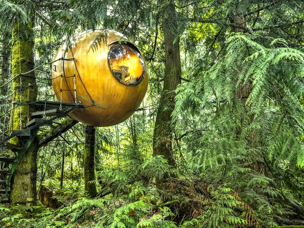 """Inspired by the principle of Biomimicry, Free Spirit Spheres' goal is to """"create new ways of living that are well-adapted to life on earth over the long haul."""" Based outside of Vancouver, the company specializes in tiny spherical tree houses that are works of art. You can even book an escape to spend the night in one at their forest hotels!"""