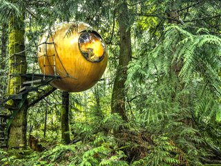 "10 Surreal Tree Houses That Will Make Your Childhood Dreams Come True - Photo 5 of 10 - Inspired by the principle of Biomimicry, Free Spirit Spheres' goal is to ""create new ways of living that are well-adapted to life on earth over the long haul."" Based outside of Vancouver, the company specializes in tiny spherical tree houses that are works of art. You can even book an escape to spend the night in one at their forest hotels!"
