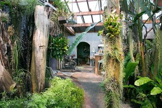 "Creatives of the Bay Area Series: Evan Shively and Madeleine Fitzpatrick - Photo 4 of 10 - When you walk in the front door, you enter into a magical oasis. Shively referenced The Moody Blues' 1968 song, ""Dr. Livingstone, I Presume,"" when he explained the idea of the entrance. ""The operating principle is that when you enter through the front door, you're in the jungle—but through the jungle, you see a fire burning stove. You're drawn into to the space,"" he says."