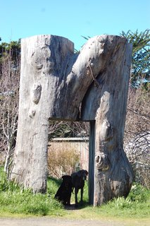 Their home is first accessed through an enormous front gate that Shively made himself out of a eucalyptus tree.