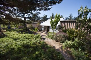 Creatives of the Bay Area Series: Evan Shively and Madeleine Fitzpatrick - Photo 3 of 10 - Once you pass through the front gate, the main entrance to the house leads into a metal greenhouse, which connects the two wings of the house. A wood sculpture by David Nash sits to the left of the entrance.
