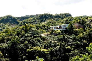 Find Yourself in Paradise at These 10 Modern Rentals in the Caribbean - Photo 4 of 10 - This view of Villa Arboleda shows the incredible amount of rich forest that surrounds the hillside escape.