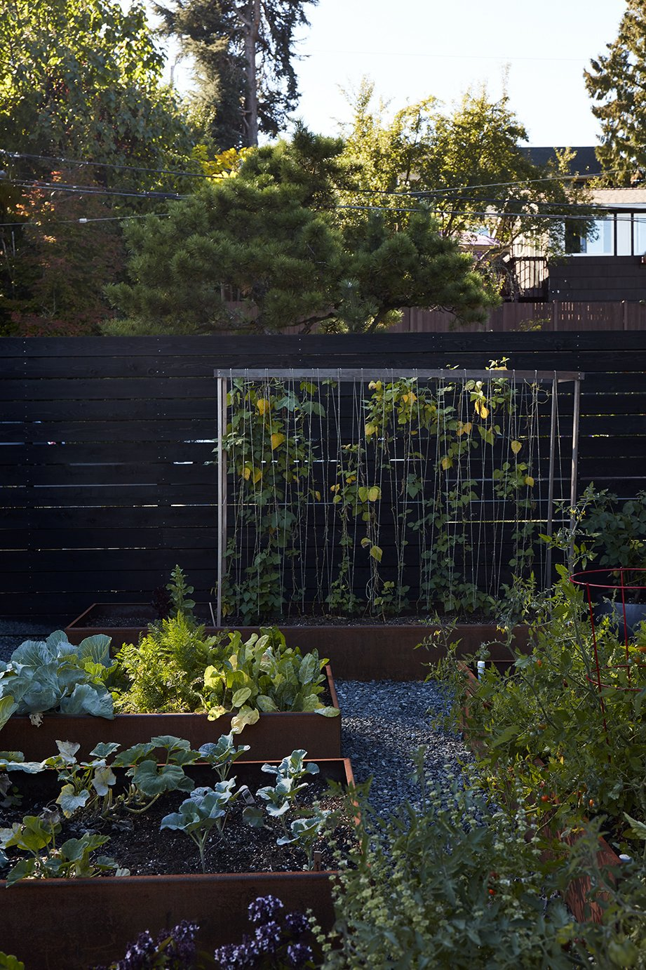 In the garden, vines of honeysuckle are intertwined on a steel-mesh trellis. Tagged: Outdoor, Back Yard, and Garden.  Photo 13 of 15 in Greener Grass