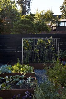 Greener Grass - Photo 12 of 14 - In the garden, vines of honeysuckle are intertwined on a steel-mesh trellis.