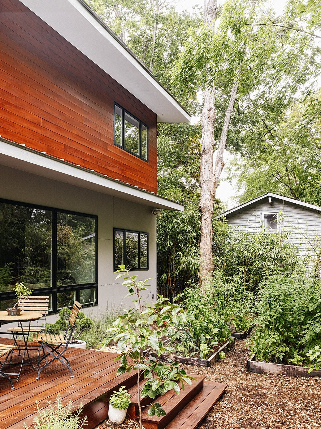 "The windows are by Jeld-Wen, and the metal roof is by Galvalume. ""I feel lucky to contribute to the architectural diversity in the neighborhood with something truly of this moment that got built despite the odds,"" says Marsha. Tagged: Outdoor, Back Yard, Front Yard, Side Yard, Trees, Walkways, Gardens, and Decking Patio, Porch, Deck.  Photo 7 of 10 in Shelter From the Storm"