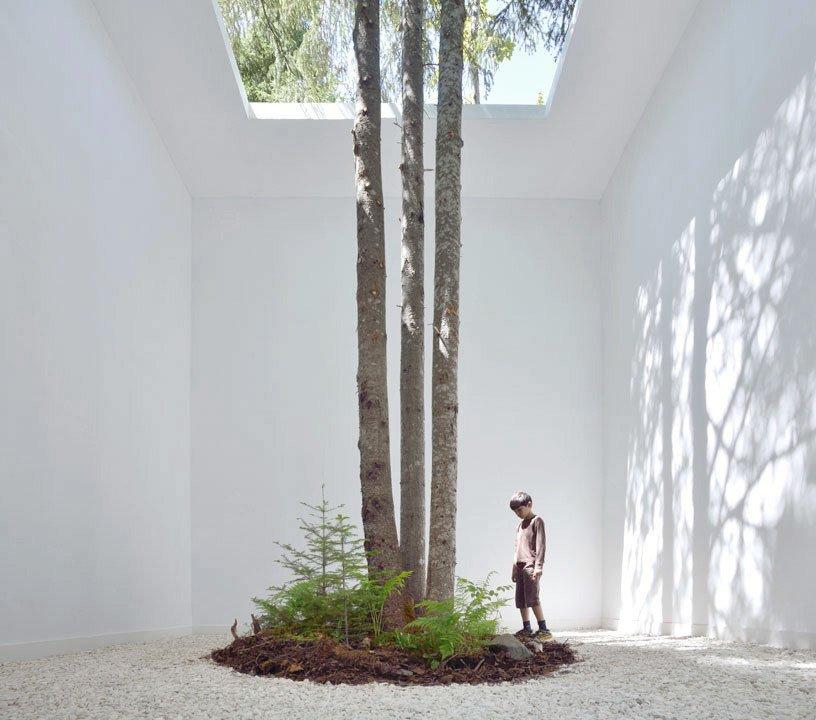 Anouk Vogel's installation  Photo 2 of 16 in 15 Brilliant Designs That Work Around Nature