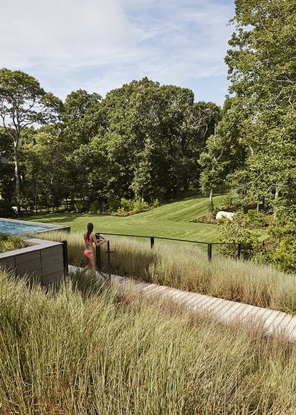 Modern home with outdoor, back yard, trees, shrubs, grass, wood patio, porch, deck, infinity pool, and walkways. Photo 6 of Promised Land