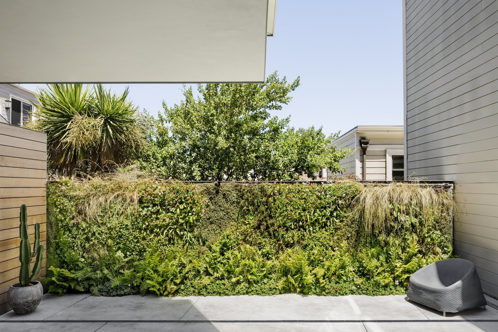 A living wall by Habitat Horticulture brings life to the compact backyard. Tagged: Outdoor, Back Yard, Shrubs, Trees, Gardens, Small Patio, Porch, Deck, Concrete Patio, Porch, Deck, and Metal Fence. A Historic Victorian in San Francisco Is Meticulously Transformed Into a Modern Family Home - Photo 24 of 27