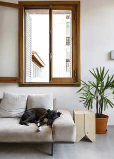 An Architect Turns His Small, Dark Apartment in Buenos Aires Into a Bright and Airy Home - Photo 3 of 10 - In the living area, their dog, Rocknrol, hangs out on a suede Copenhagen sofa by Alejandro Sticotti for Net Muebles.