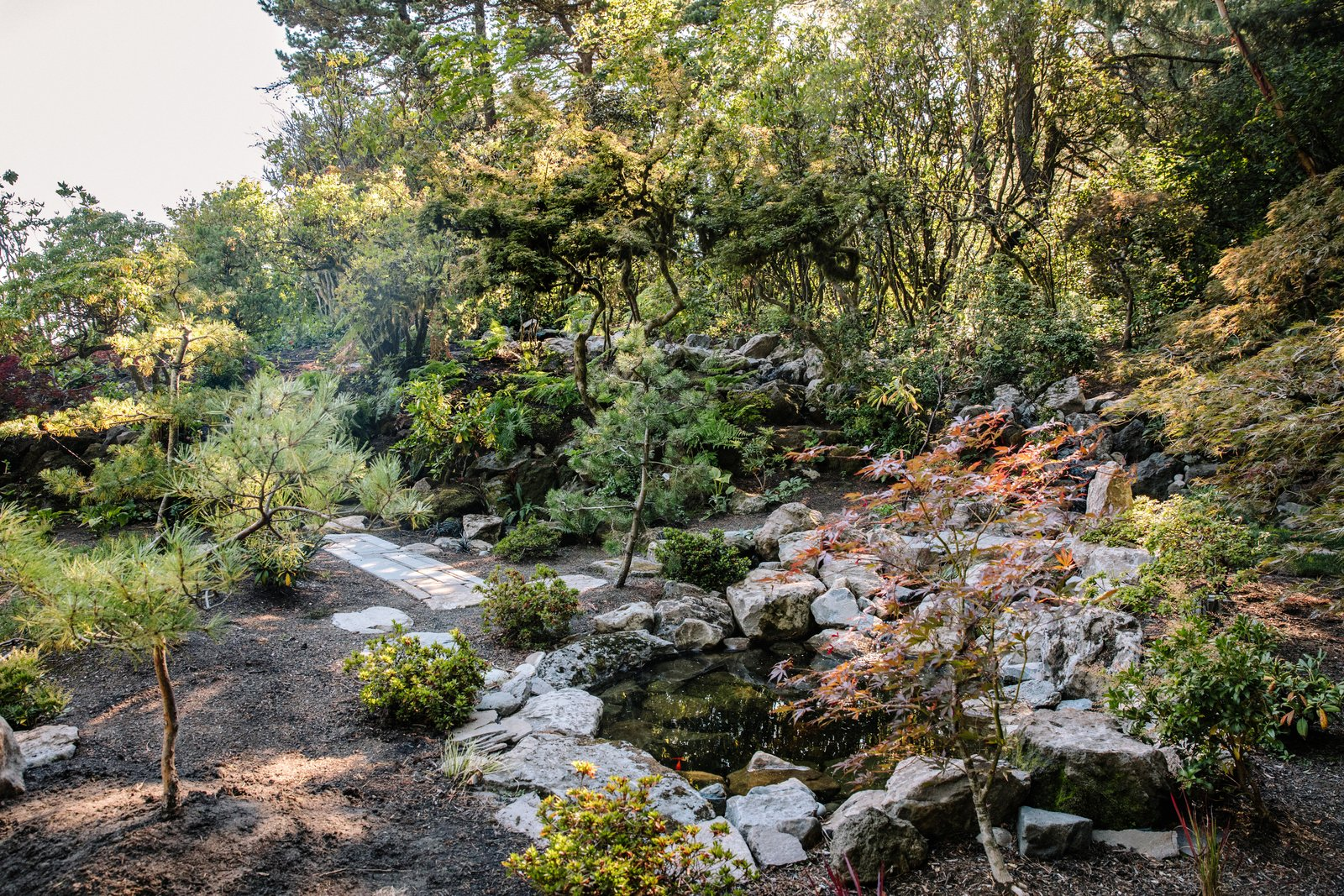 A strolling garden and a pond with a waterfall have already been brought back Tagged: Outdoor, Garden, Trees, Shrubs, Boulders, Gardens, and Walkways.  Photo 8 of 15 in Nearly 80 Years Later, an Architect Rescues a Japanese-Inspired  Masterwork Designed by His Father