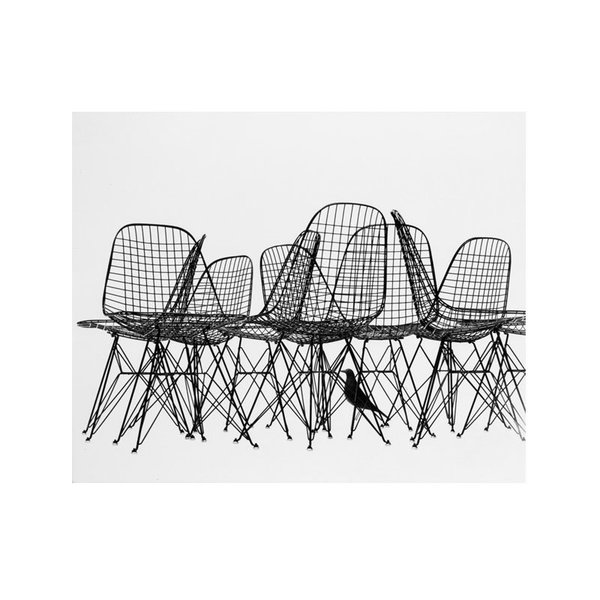 Eames Wire Chairs & Bird Print