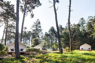 Camp Out in a Comfortable Tent or Airstream in Northern California