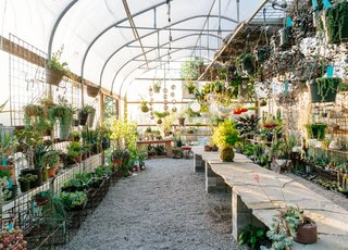 This 120-Year-Old Home With a Greenhouse Is a Gardener's Paradise - Photo 13 of 27 -