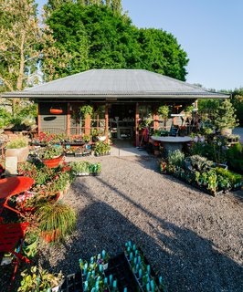 This 120-Year-Old Home With a Greenhouse Is a Gardener's Paradise - Photo 10 of 27 -