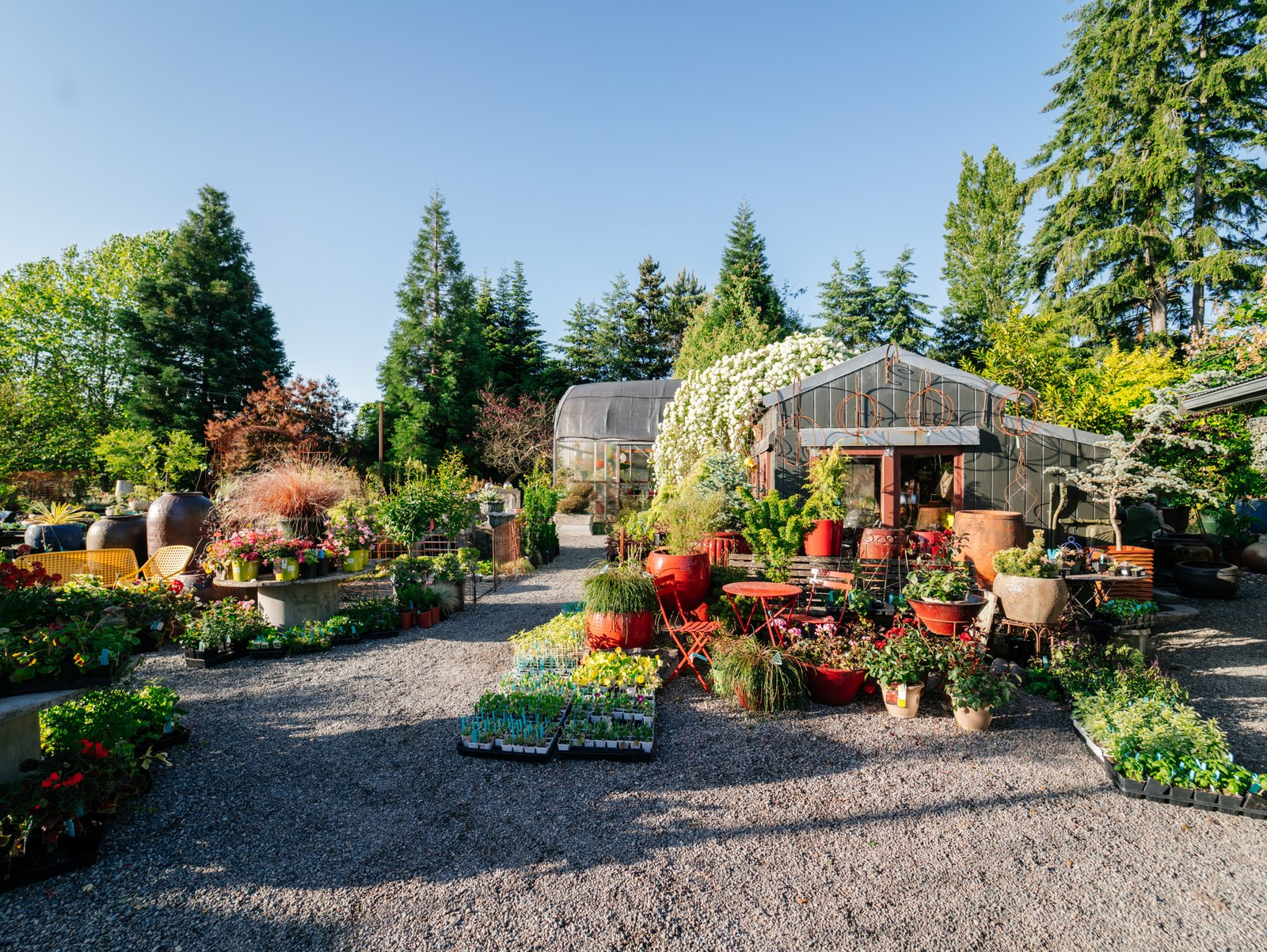 This 120-Year-Old Home With a Greenhouse Is a Gardener's Paradise