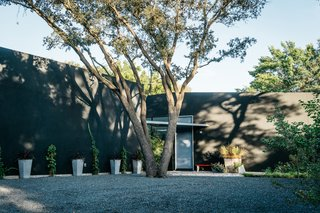 A Black Stucco Home in Dallas Is Surrounded by Eye-Popping Greenery - Photo 16 of 17 -