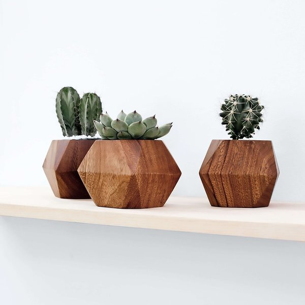Adia Planter by The Citizenry