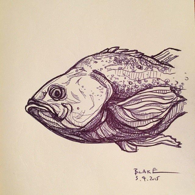 #fish #molskine  #sketch with a #bic  Sketchbook by Stephen Blake