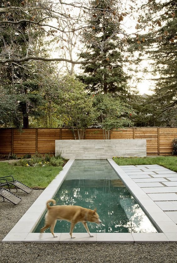 30+ Best Modern Fences by William Lamb from Pets