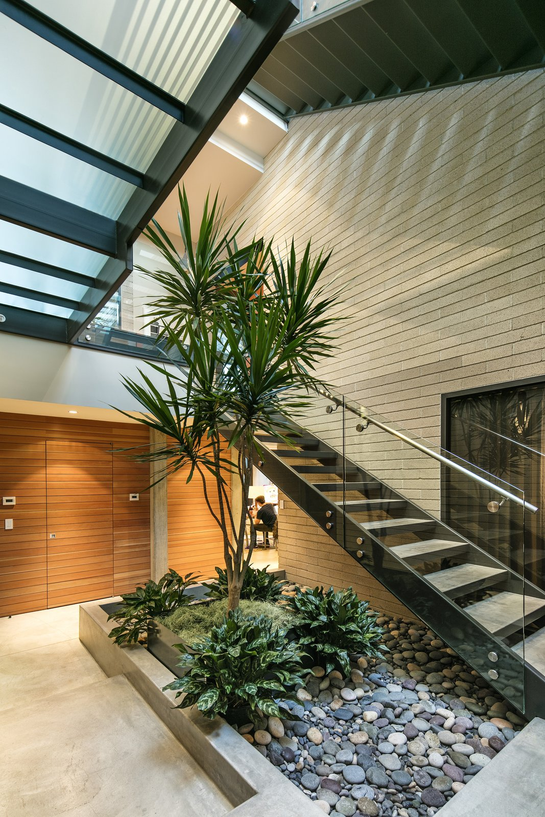 A living tree is stationed on the ground level, sprouting up through the multi-tier stairwell.   Cohen Residence by Abramson Teiger Architects