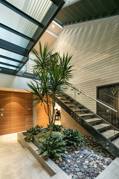 A living tree is stationed on the ground level, sprouting up through the multi-tier stairwell.  Photo 4 of Cohen Residence modern home