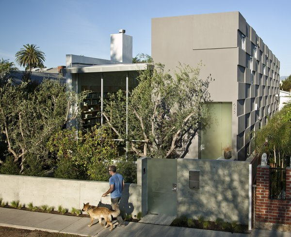 The Goodman Residence is located on a typical narrow lot in the trendy Venice Beach Neighborhood of Los Angeles.  Photo  of Goodman Residence modern home
