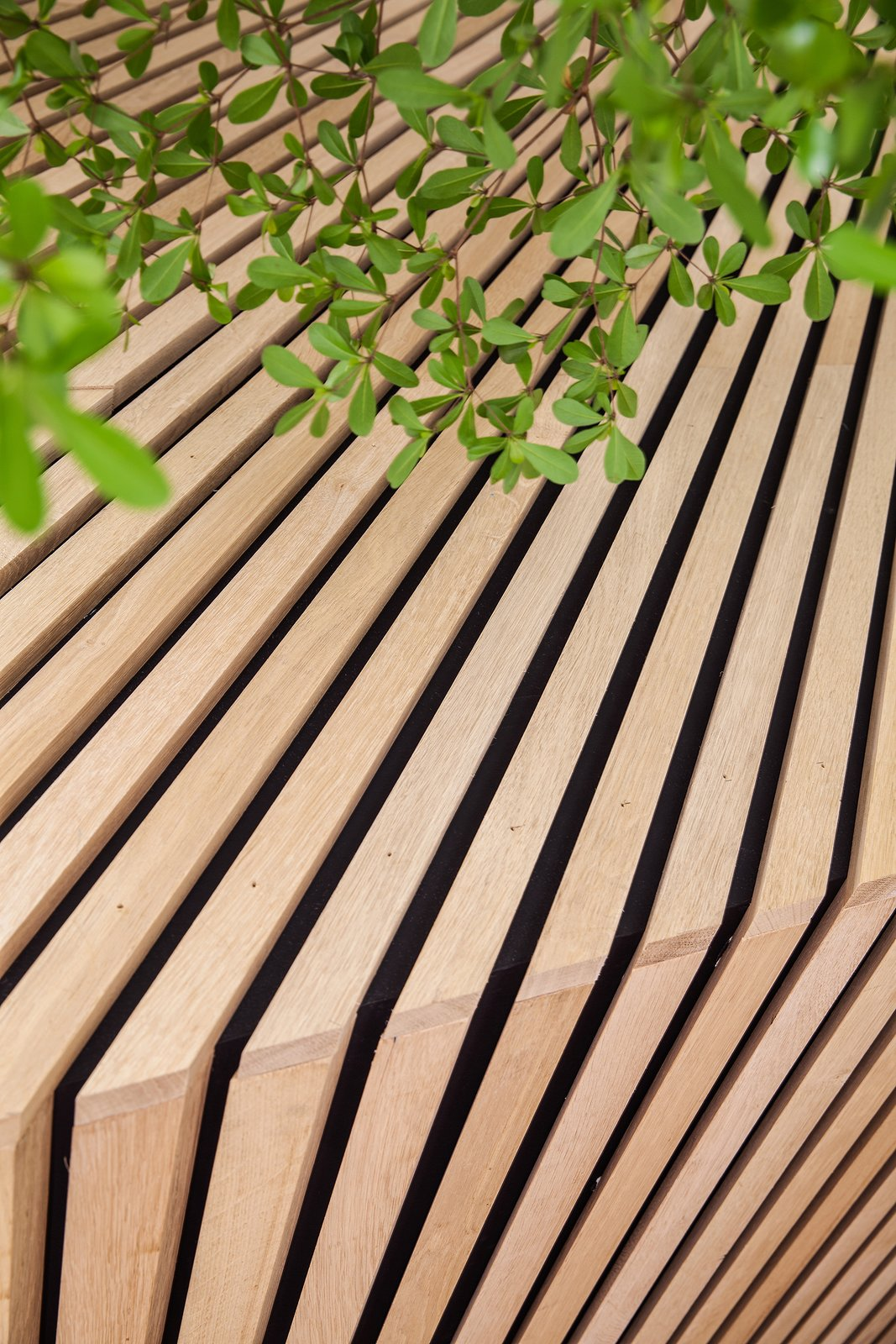 A close-up of the wood detailing. Photo by Wouter van der Sar.  Photo 5 of 7 in A Tree Grows in Amsterdam