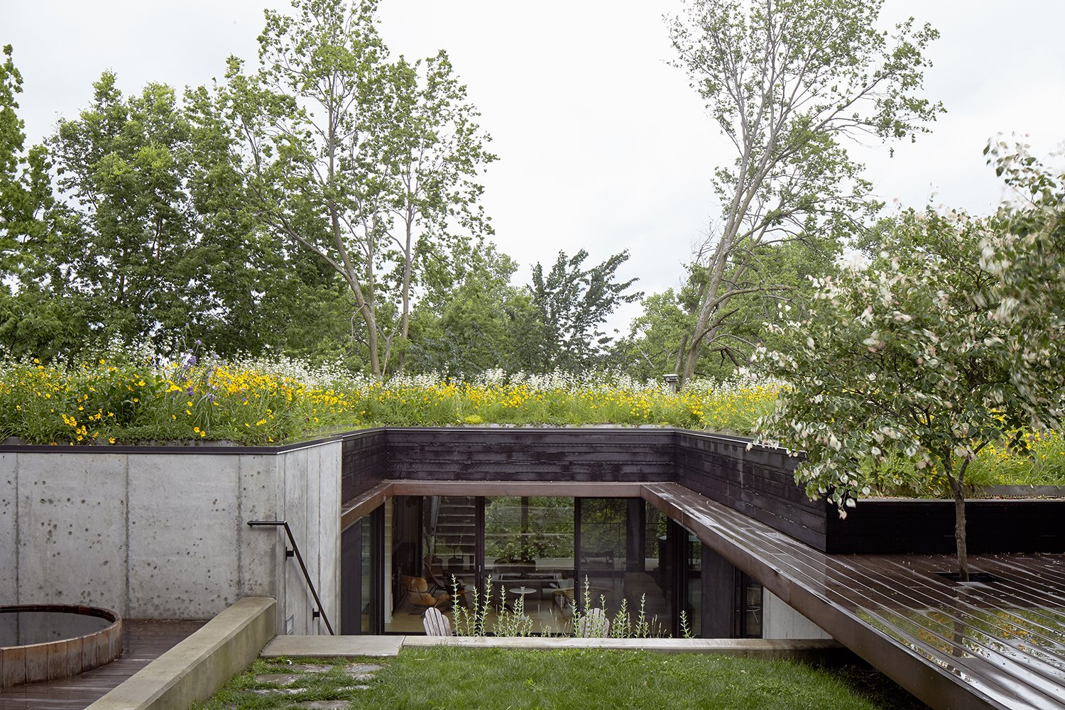 Stained cedar, ipe, and concrete form the 2,500-square-foot home's modern palette. Indigenous wildflowers and native grasses grow on top of the structure; this planted roof also helps insulate the home and limited its energy needs. Tagged: Grass, Small Patio, Porch, Deck, Rooftop, Wood Patio, Porch, Deck, Exterior, Green Roof Material, Concrete Siding Material, and Wood Siding Material.  outdoors by Laura McLaughlin from Nature Reigns Supreme at a Verdant Kansas City Home