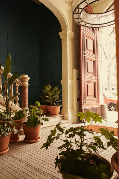 In the main corridor of the refreshed 19th century building, lush potted plants from Alejandra Coll of Asilvestrada Plants sit on top of original mosaic floors.