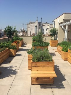 A Boutique Hotel That Captures the Creative Spirit of Barcelona - Photo 6 of 12 - The newly opened rooftop terrace features a fragrant garden that was created by Alejandra Coll. The ingredients grown here will be used at the restaurants and bars in the hotel.